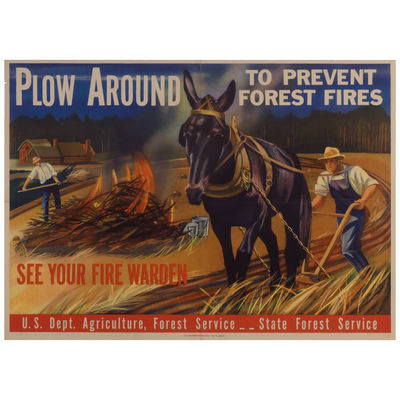 Plow Around to Prevent Forest Fires:...