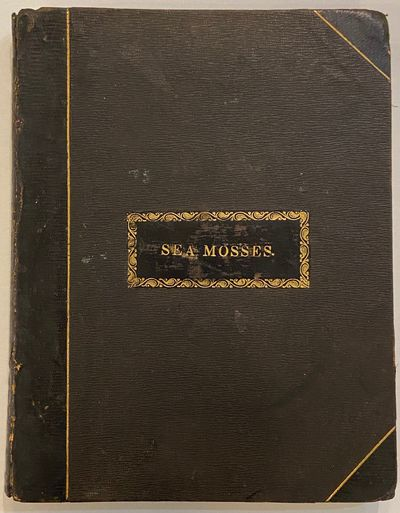 8vo in 3/4 dark brown leather, spine rubbed with laid title on front cover. 40pp with 35 actual spec...