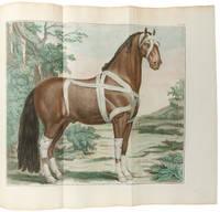 Cours d'hippiatrique, ou traité complet de la médecine des chevaux