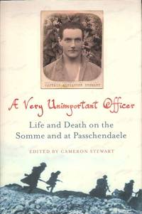 A Very Unimportant Officer.  Life and Death on the Somme and at Passchendale
