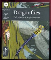 image of Dragonflies.