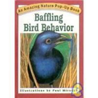 Baffling Bird Behavior (An Amazing Nature Pop-Up Book)