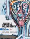 image of Juvenile Delinquency: The Core