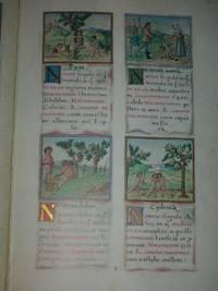 Tacuinum sanitatis vollständige Faksimileausgabe im Originalformat des Codex 2396 der Österreichischen Nationalbibliothek : Kommentar