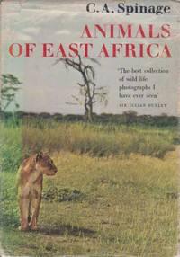 Animals Of East Africa