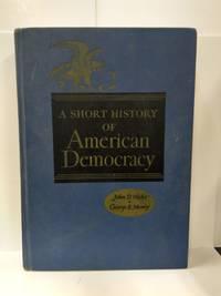A Short History of American Democracy