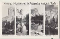 Natures Moments in Yosemite National Park, RPPC Real Photo unused Postcard