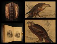 The naturalist's library, Ornithology, birds of Great Britain and Ireland, part I
