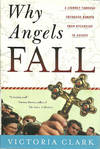 image of Why Angels Fall: A Journey Through Orthodox Europe from Byzantium to Kosovo