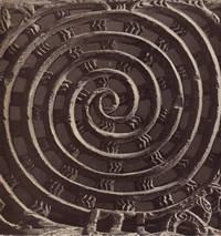 image of Museum Rietberg Zurich - Art of Oceania. A Descriptive Catalogue