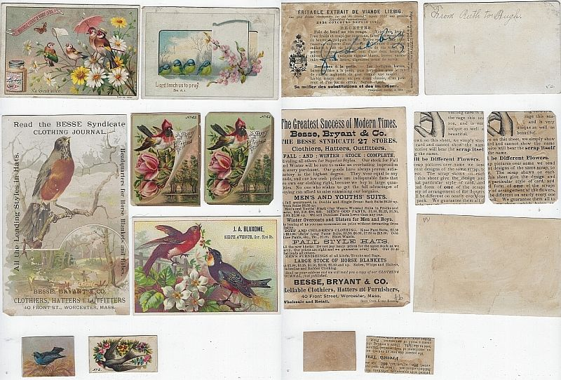 LOT OF EIGHT SCRAP VICTORIAN TRADE CARDS FEATURING BIRDS, Advertisement