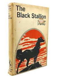 image of THE BLACK STALLION