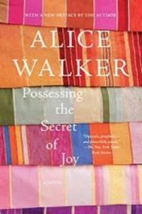 image of Possessing the Secret of Joy: A Novel