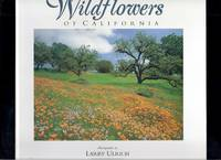 Wildflowers of California: Indepth Photographic Study of California Native Wildflowers by a...