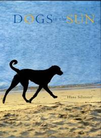 image of Dogs In The Sun