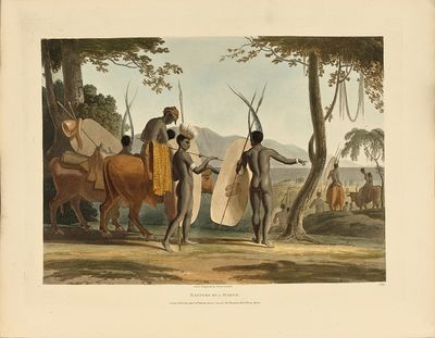 African scenery and animals.