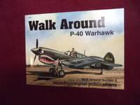 P-40 Warhawk. Walk Around No. 8.