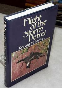 image of Flight of the Storm Petrel
