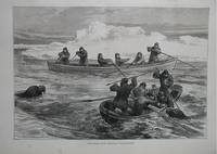 image of The Pandora Arctic Expedition: Walrus Shooting.