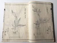 image of Enchuro-ryu Soka Zue