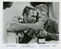 Shark (Collection of 5 stills from the 1969 film)