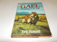 Gael: Sheepdog of the Hills
