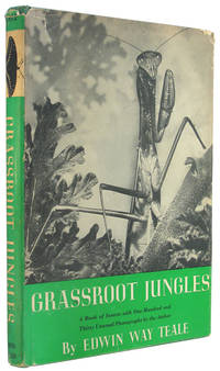 Grassroot Jungles: A Book of Insects