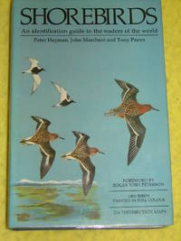 Helm, Shorebirds, An identification guide to the waders of the World