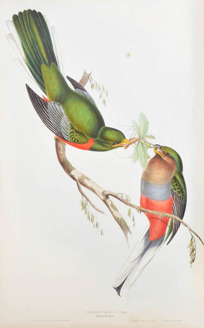 A monograph of the trogonidae, or...