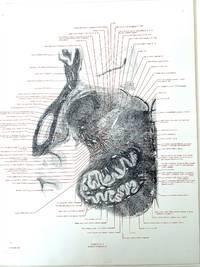 Microscopical atlas of the human brain: plates no. IVA, IVB, VIA, VIB, VII and VIII