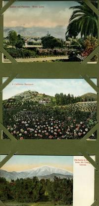 image of 6 Unused Color Postcards, Pasadena California