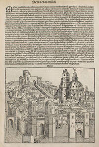 Metz, France in the Liber chronicarum- Nuremberg Chronicle, an individual page from the Chronicle featuring Metis/Metz/Mediomatricus (France) Plate No. CX