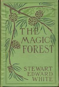 The Magic Forest: a Modern Fairy Story (Hardcover)