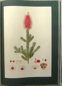 The Australian Flower Paintings of Ferdinand Bauer