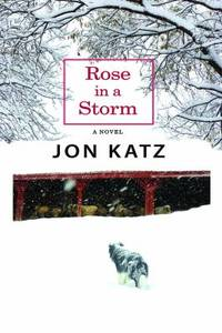 image of Rose in a Storm