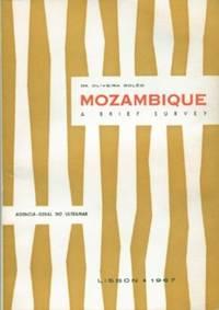 Mozambique - a Brief Survey