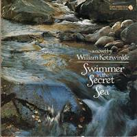 Swimmer in the Secret Sea: A Novel