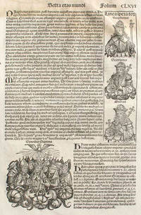 Liber chronicarum- Nuremberg Chronicle, an individual page from the Chronicle featuring description of the reigns of Irene, Nicephorus, Michael of Constantinople, Desiderius, Paul, Usuard, Alcuin, Plate No. CLXVI