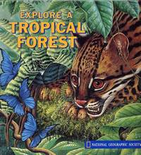 image of Explore a Tropical Forest