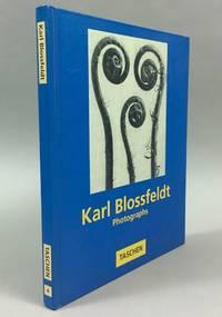 Karl Blossfeldt: photographs