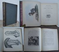 THE DODO AND ITS KINDRED, or the History, Affinities, and Osteology of the Dodo, Solitaire, and Other Extinct Birds of the Islands Mauritius, Rodriguez, and Bourbon.