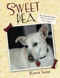 Sweet Pea: The Homeless Dog Who Could Not Be Caught