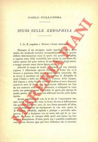 Studi sulle Xerophila.