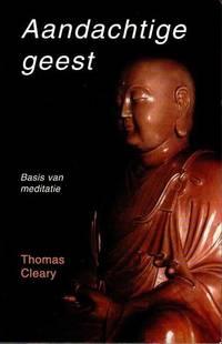 image of Aandachtige geest. Basis van meditatie