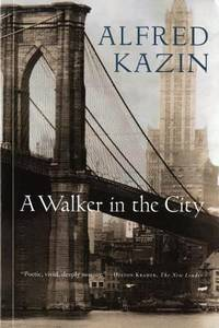 image of A Walker in the City