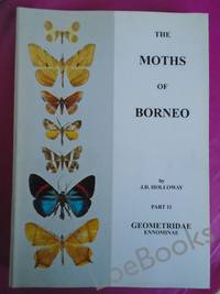 THE MOTHS OF BORNEO Part 11: Geometridae Ennominae