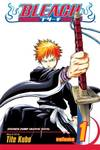 image of Strawberry and The Soul Reapers (Bleach)