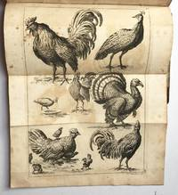 The Compleat Drawing Book