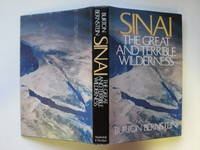 image of Sinai: the great and terrible wilderness