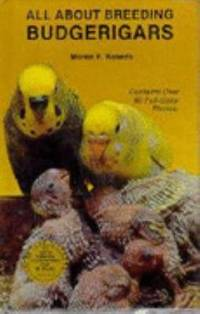 All about Breeding Budgerigars